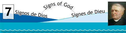 Signs of God N.7