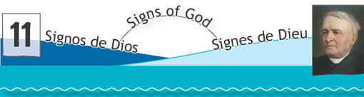 Signs of God N. 11